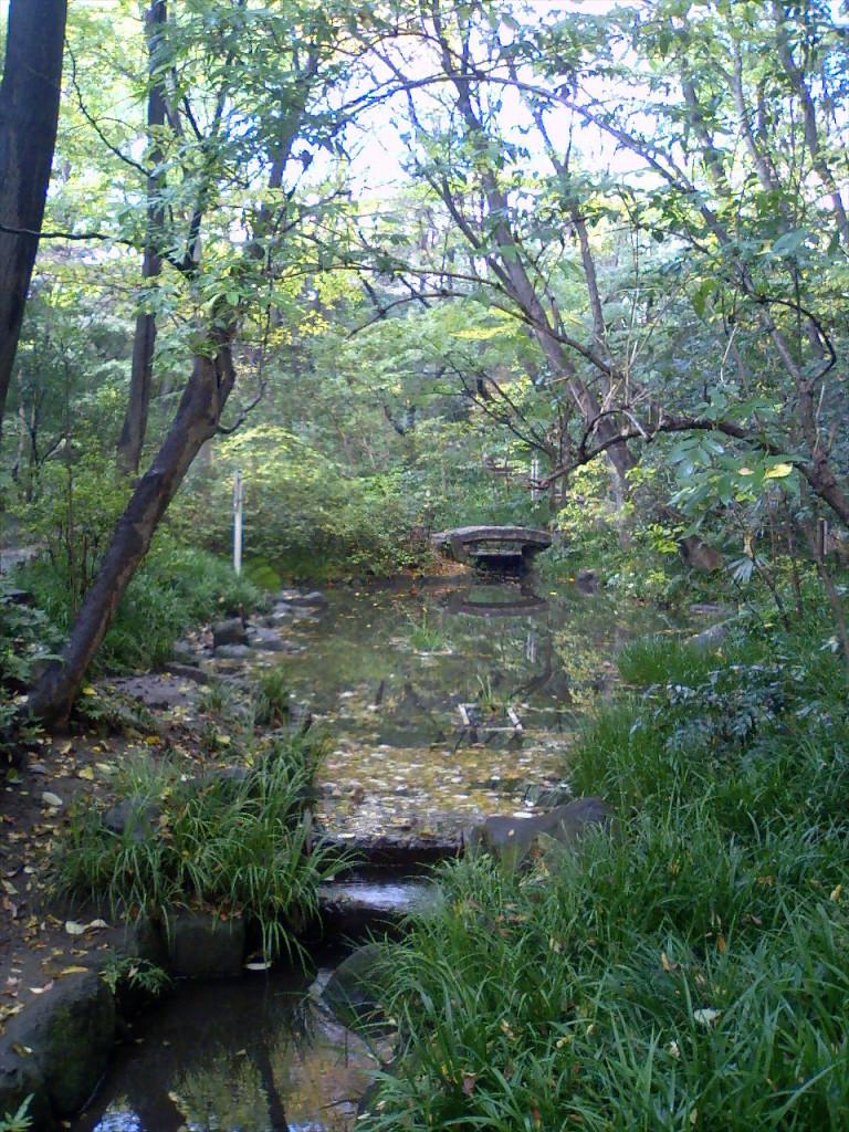 目白駅から徒歩12分 新宿区の秘境、おとめ山公園