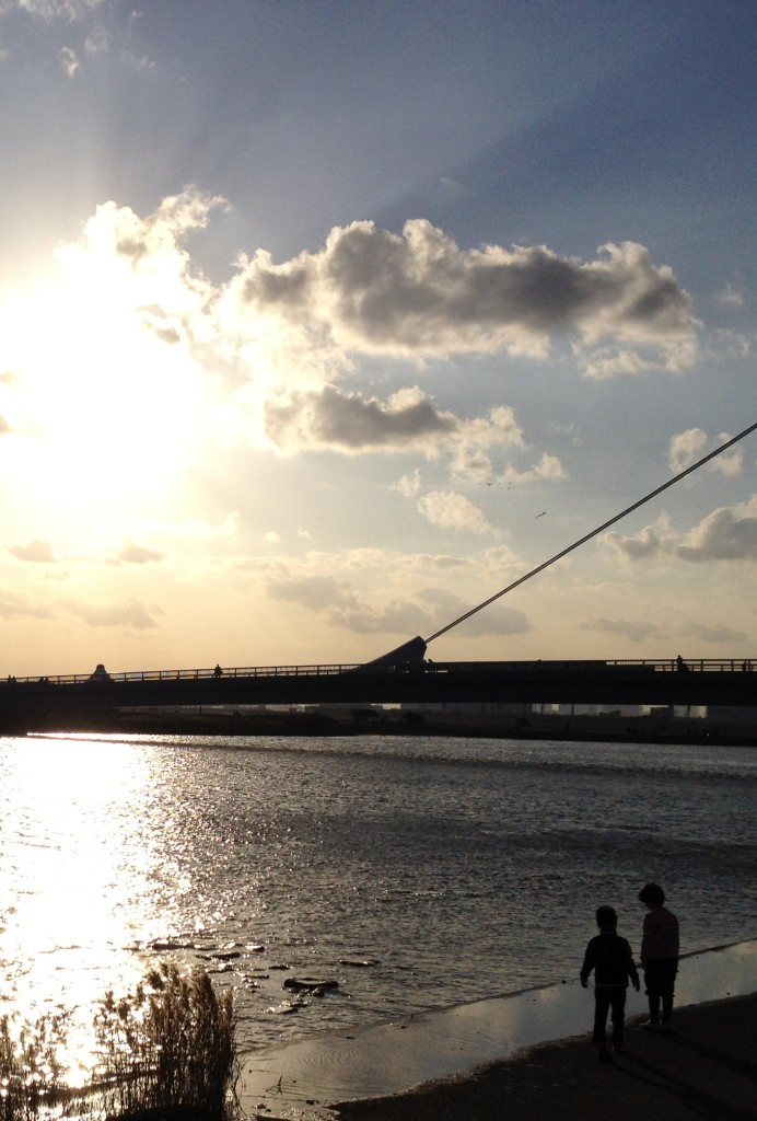 夕方の葛西臨海公園