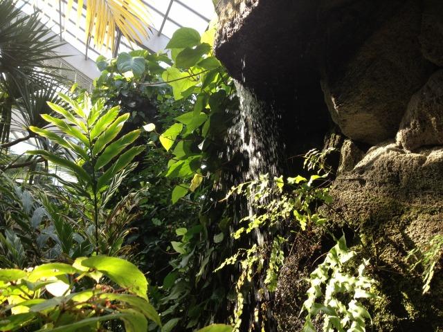 春分の日、熱帯植物館から荒川河川敷